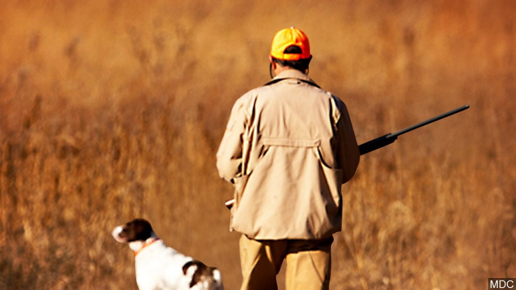 Missouri lead shot rule seeks to limit exposure in birds
