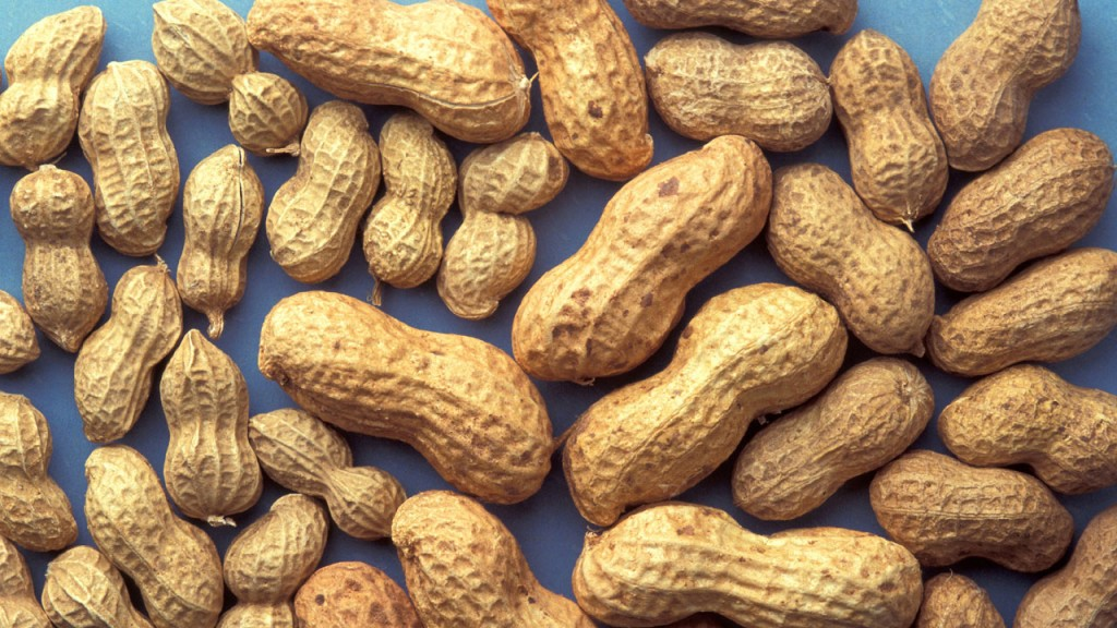 Study: Experimental treatment helps 2/3 with peanut allergies