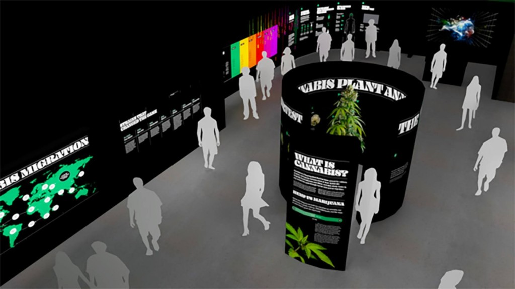 'Museum of Weed' coming to Hollywood