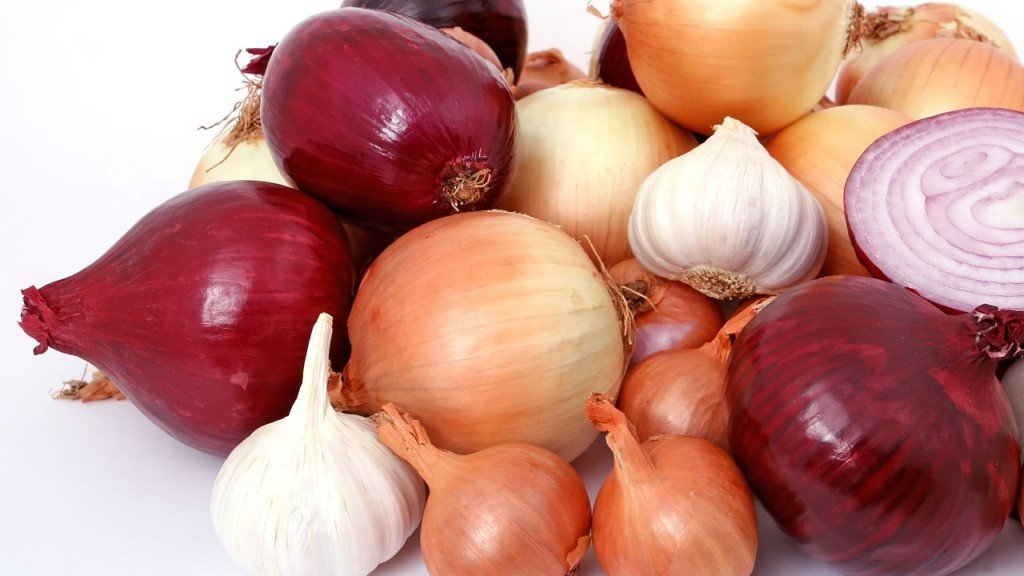 Best foods to fight fall allergies