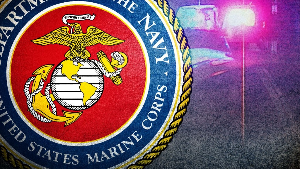 Us Marine Corps Seal Over A Crime Background, Mgn Image