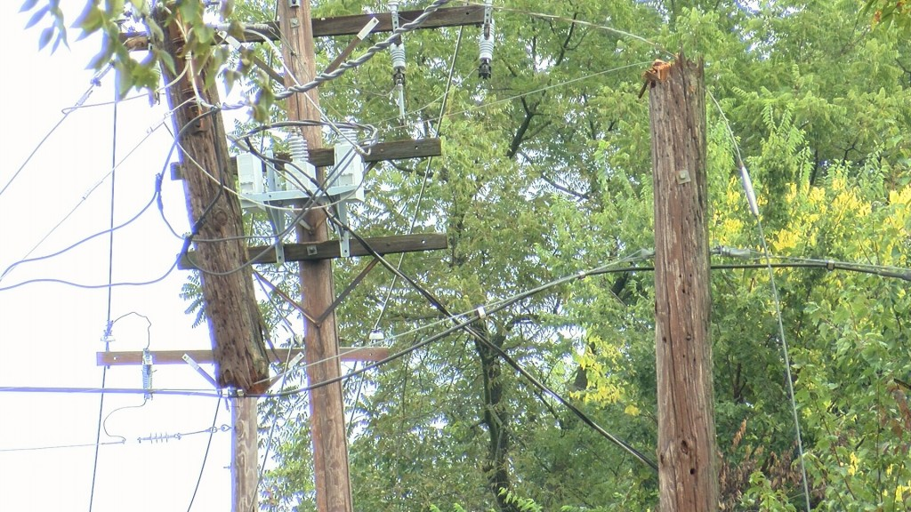 Storm knocks down trees and power lines in Lamar leaving some without power.