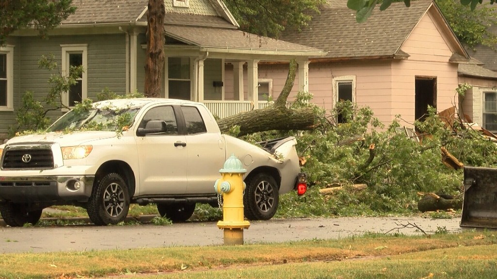 Storm Causes Damage Via Falling Tree Limbs