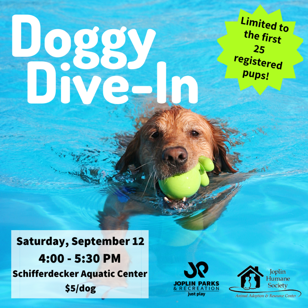 Third Annual Doggy Dive In