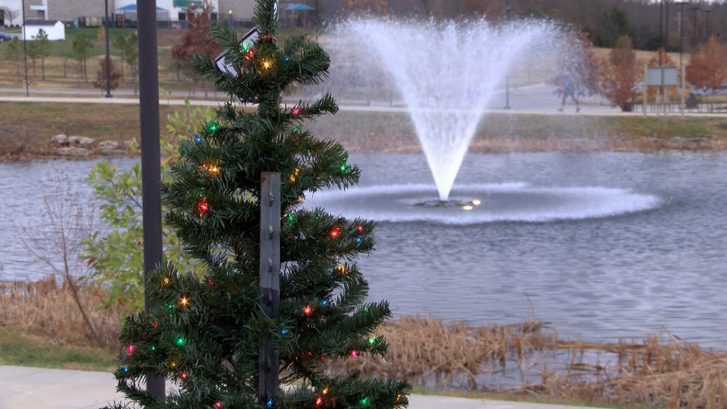 A Christmas Tree In Mercy Park