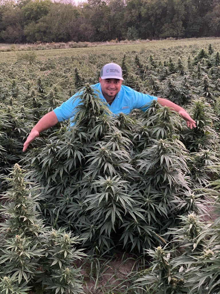 a hemp farmer in sheldon, mssouri