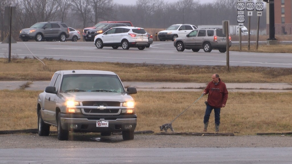A Man Walks His Dog As Cars Drive By
