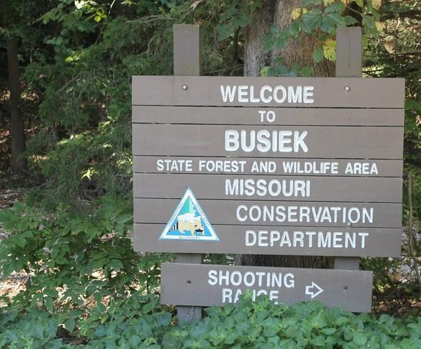 Busiek State Forest Sign