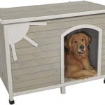 In The Dog House: Which Abode Is Right For Your Pup?