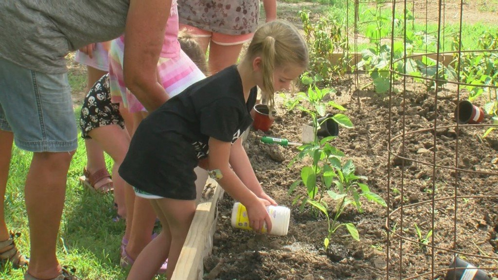Some Area Kids Worked On Their Green Thumb In Webb City Today