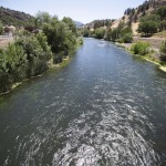 Warming Rivers In Us West Killing Fish, Imperiling Industry