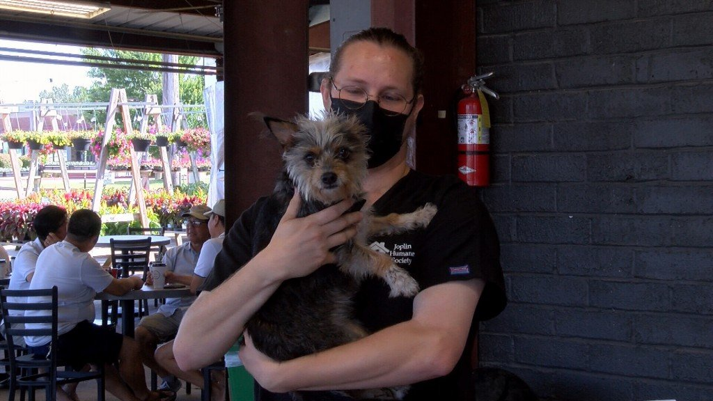 A Joplin Humane Society Representative Holds A Pup At The Fur Baby Fundraiser