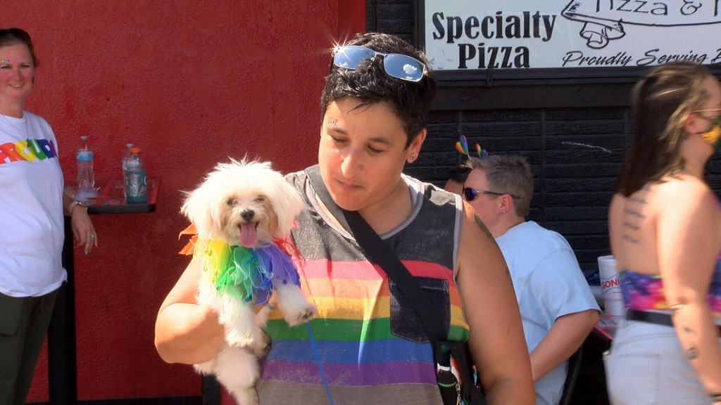 A Pridefest Pup And Its Owner