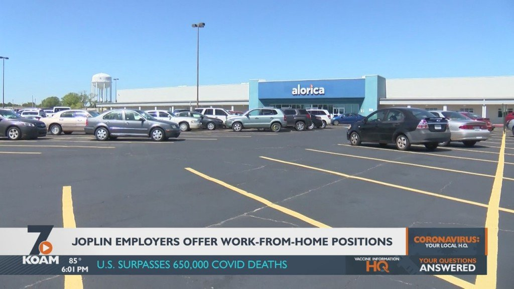 Local Business Adds Hundreds Of Online Jobs
