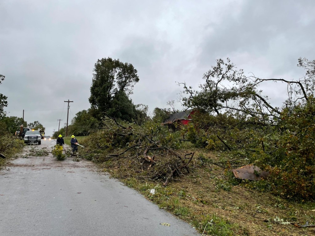 Newmac Electric Works On Downed Trees Power Lines On Jaguar Road 1