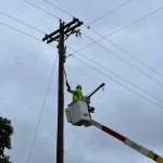 Newmac Electric Works On Downed Trees Power Lines On Jaguar Road 6