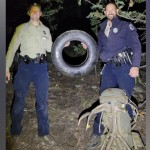 After Several Attempts, Wildlife Officers Remove Tire That Was Around Elk's Neck For Over 2 Years