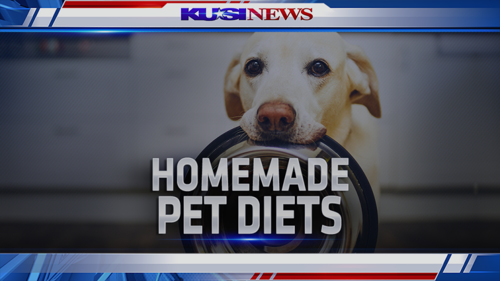 Bam Homemadepetdiets 1