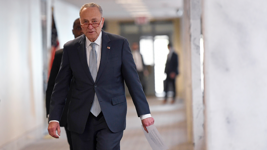 Chuck Schumer Blocks Coronavirus Relief Bill