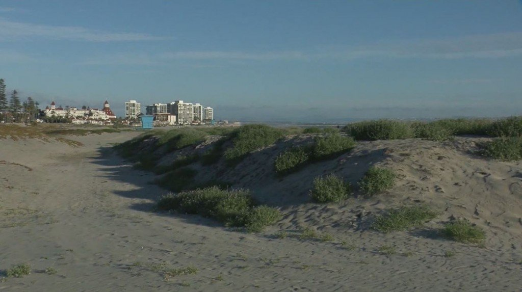 Coronado Beach Closures