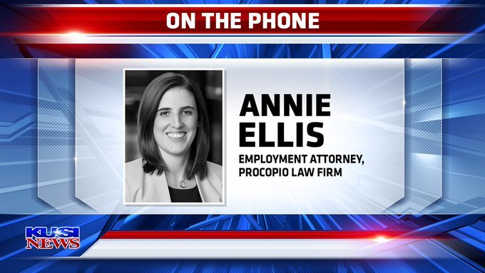 Annie Ellis Employment Attorney