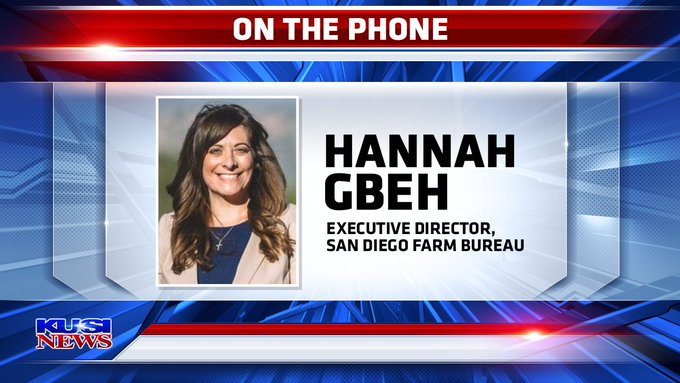 Hannah Gbeh Phoner