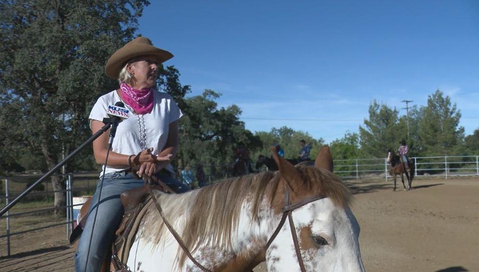 Saddles In Service