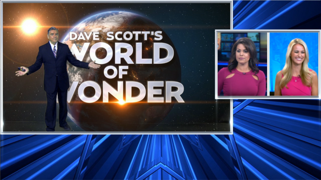 Dave World Of Wonder 28 Years