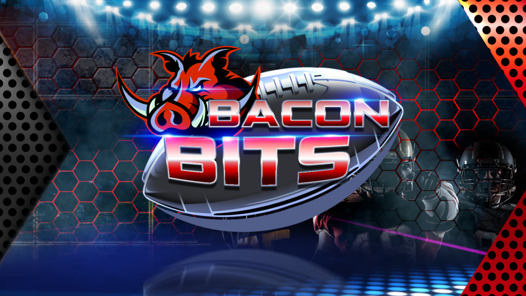 Fs Bacon Bits