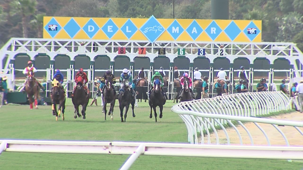Del Mar Races Starting Gate