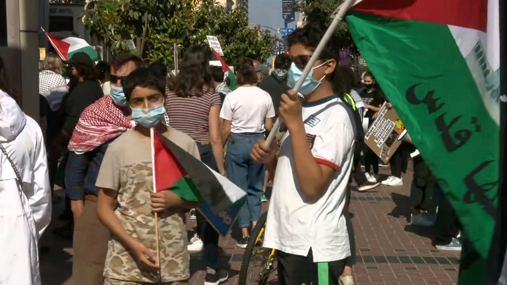 Palestinian Protest