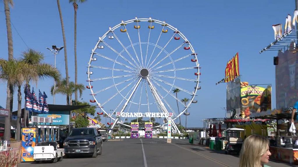 Home Grown Fun Ferris Wheel