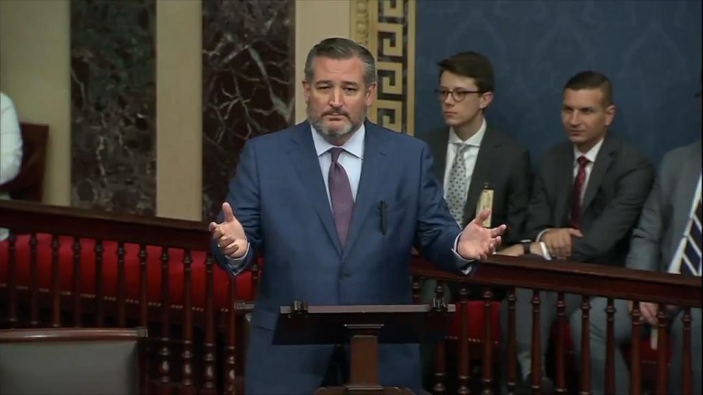 Ted Cruz Slams Fauci And Dems