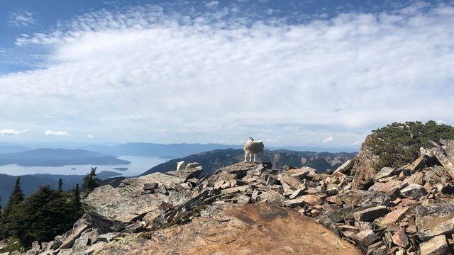 National Take a Hike Day: 5 of the best Inland Northwest hikes