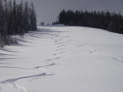 Earn Your Turns at 49° North