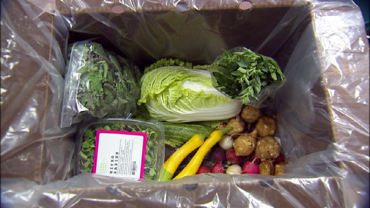 Produce included in Thursday's LINC Foods box.