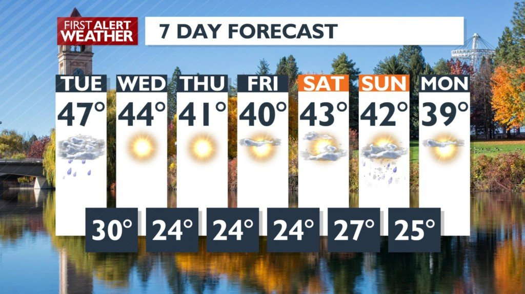 Sunshine in the forecast (after a little more rain)!