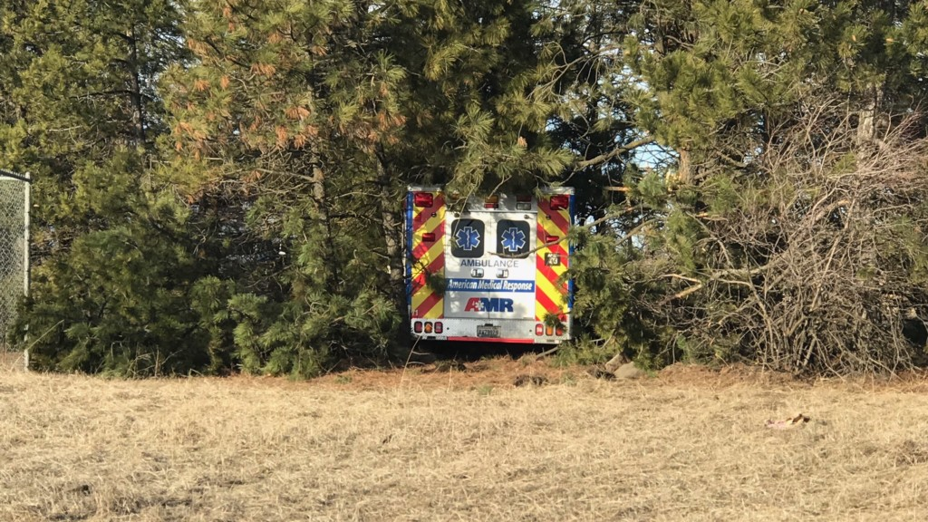Ambulance side swiped by distracted driver, crashes into trees