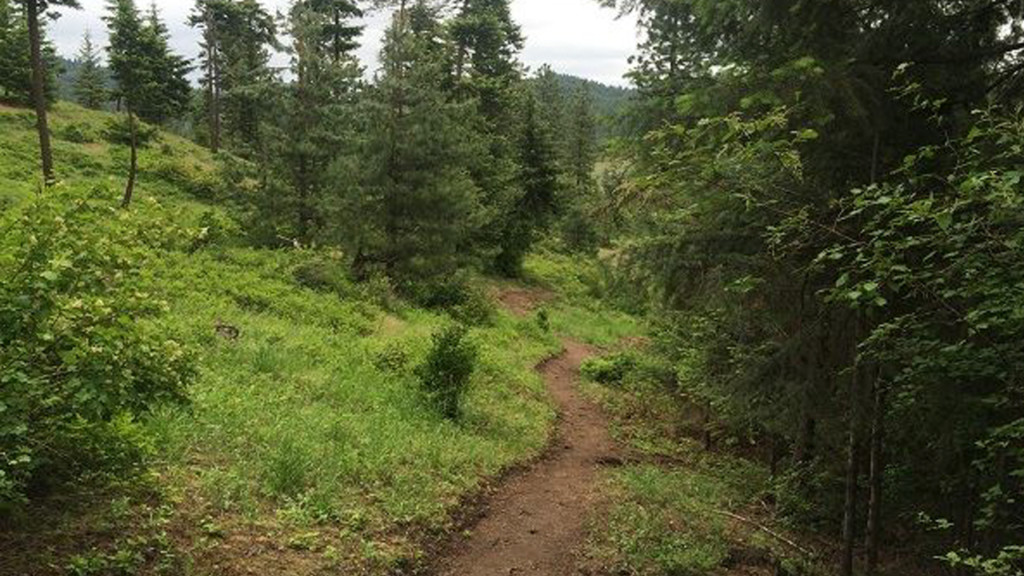 Spokane Co. acquires 230 acres of land to add to Antoine Peak Conservation area