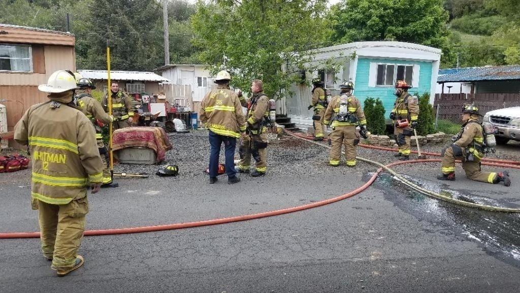Dog killed in arson fire at Pullman mobile home