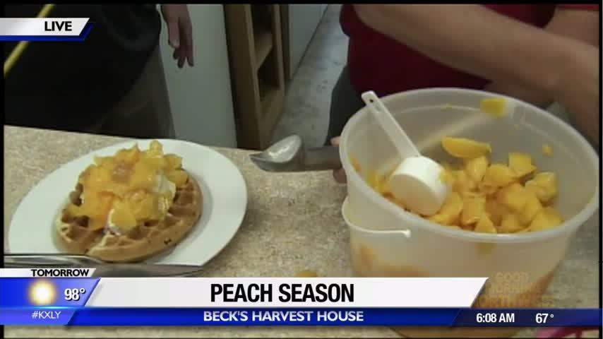 It's time for Peach Month at Beck's Harvest House