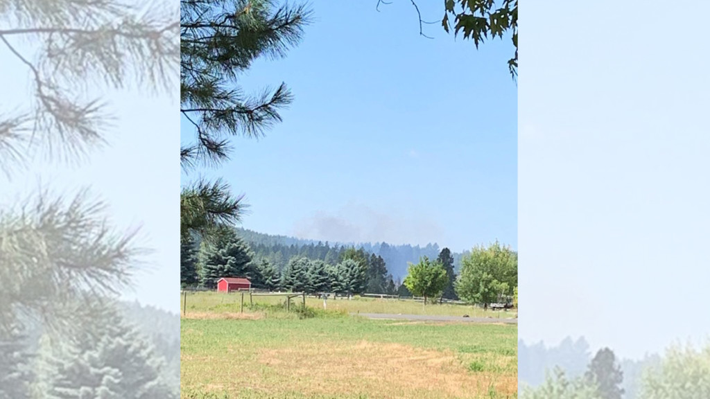 Brush fire burns half an acre near 395 north of Spokane