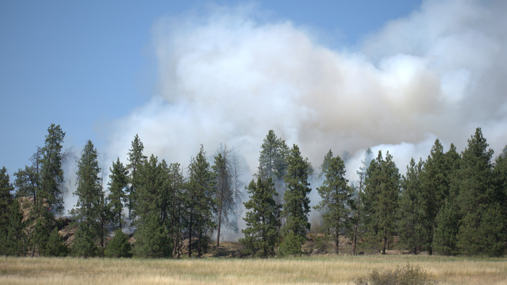 Brush fire burns five acres near Spokane Valley park