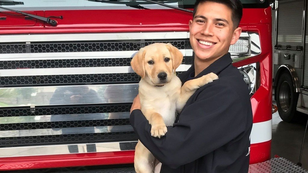 Coeur d'Alene Fire welcomes new member: Canine Lady
