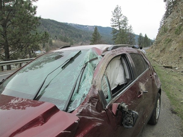 Bee causes rollover accident on Idaho Highway 7