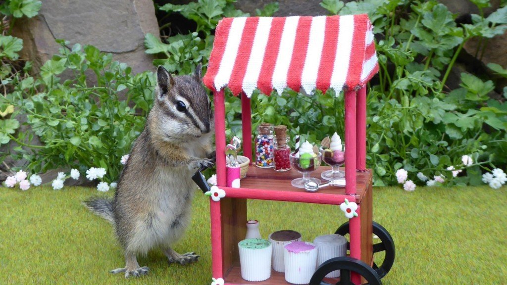 Students build miniatures for Spokane woman's chipmunk calendar