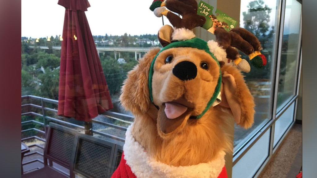Celebrate Christmas in July with the Spokane Humane Society