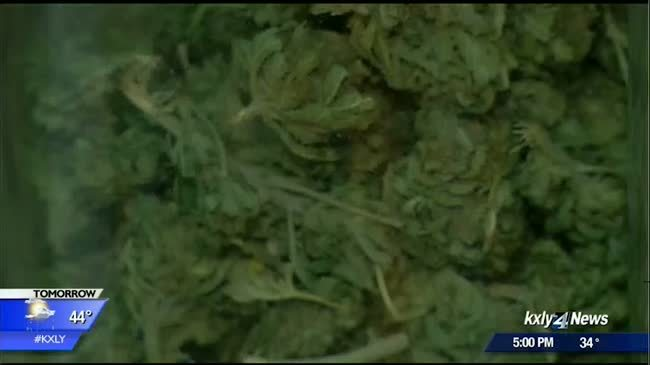 Cities and counties collect portion of tax from pot sales