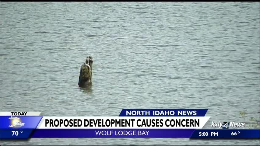 Proposed Wolf Lodge Bay development sparks environmental concern among some community members