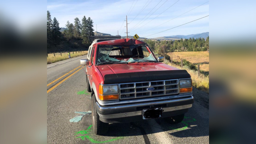 Driver seriously injured when truck crashes into deer